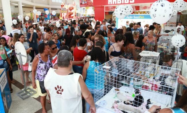 Photo of Shopping Grande Rio promove feira de adoção de animais neste sábado (23)