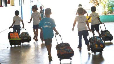 Photo of Aumenta o número de crianças nas escolas em cinco anos